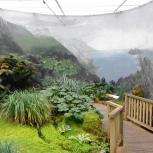 TAS Botanical Gardens