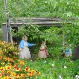 TAS Peter Rabbit Garden 2
