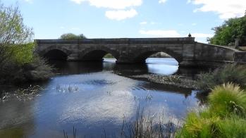 TAS Ros bridge