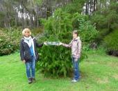 TAS Allendale gardens 2