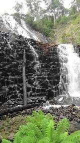TAS Dip Falls 2