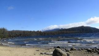 TAS Lake St Claire 4
