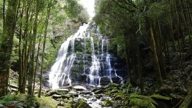 TAS Nelson Falls 2