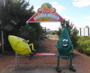 NSW Orange world 4